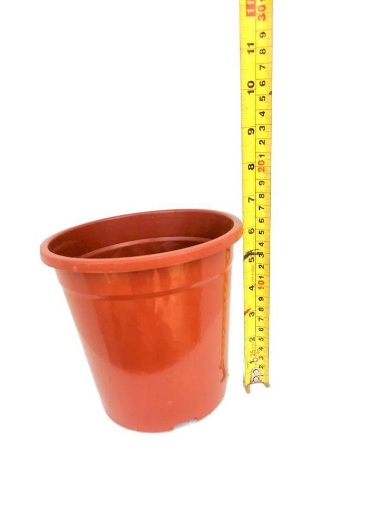 Flower Pot @ 18 cm (D) x 16 cm (H) » Gardening Supplies
