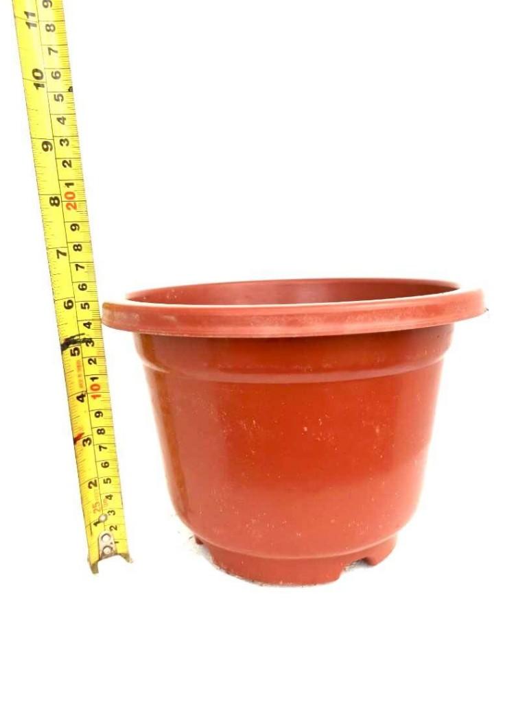 Flower Pot @ 22 cm (D) x 15 cm (H) » Gardening Supplies
